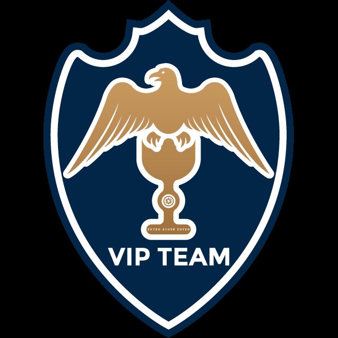 Vip Team Asigurari